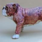 Clare Pavey Ceramics - Gallery Image